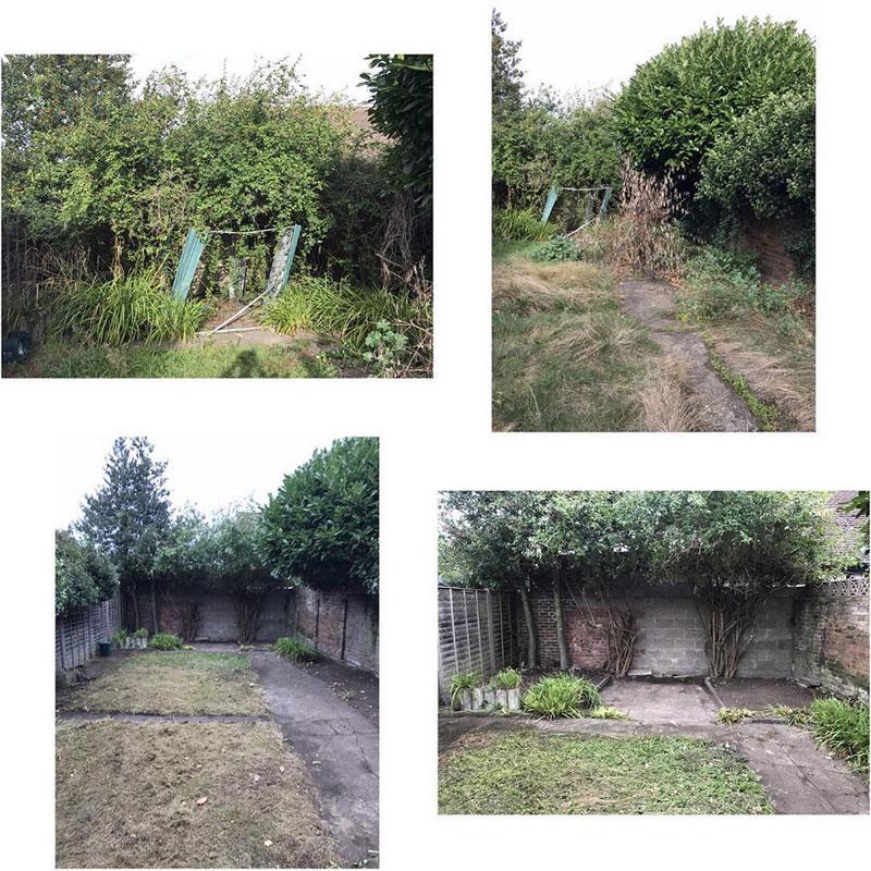 Garden Clearance Teddington